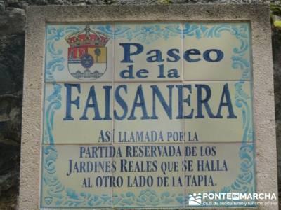 Ruta senderismo Peñalara - La Granja de San Ildefonso; viajes senderismo agosto